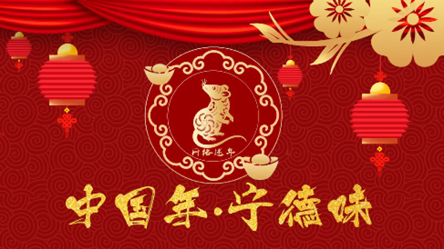 [網絡中(zhong)國(guo)節?春hang)回家(jia)過年